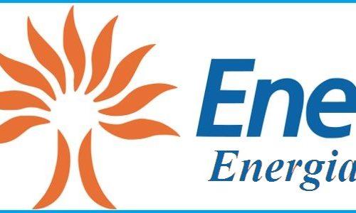 Enel Energia Elettrica e Gas 2014, più servizio di Salvaguardia fino a dicembre 2016