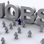 lavori estivi 2014 più richiesti: giardinieri, pet-sitter e badanti